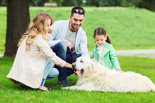 Tips For Introducing Your Kids To A New Pet