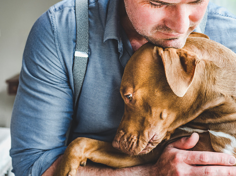 Science-Backed Reasons To Hug Your Pet Everyday